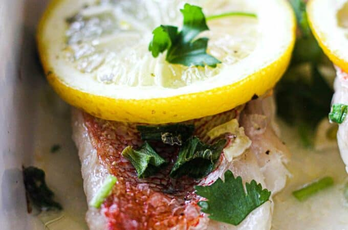 oven baked ocean perch fillets with lemon and cilantro