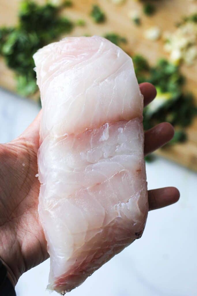 raw grouper fillet in a hand