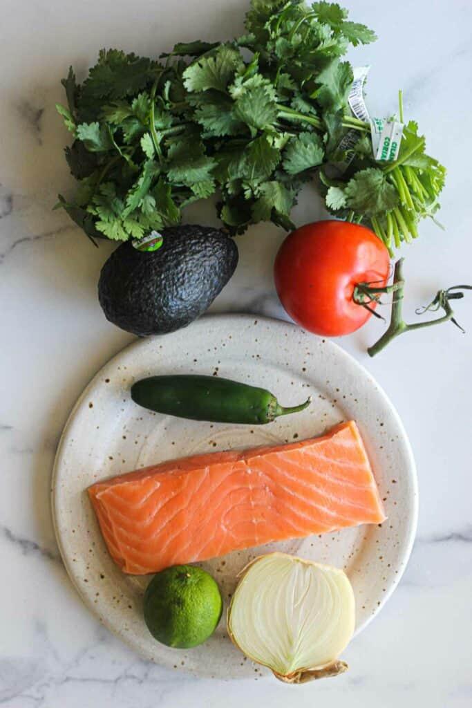 ingredients used in this recipe, salmon avocado onion, jalapeno cilantro