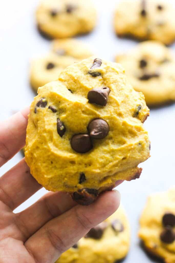close look at the cookies with chocolate chip in hand